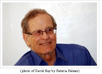 david_by_patricia_palmer
